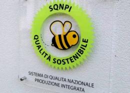 i vini di emilio bulfon certificati sqnpi